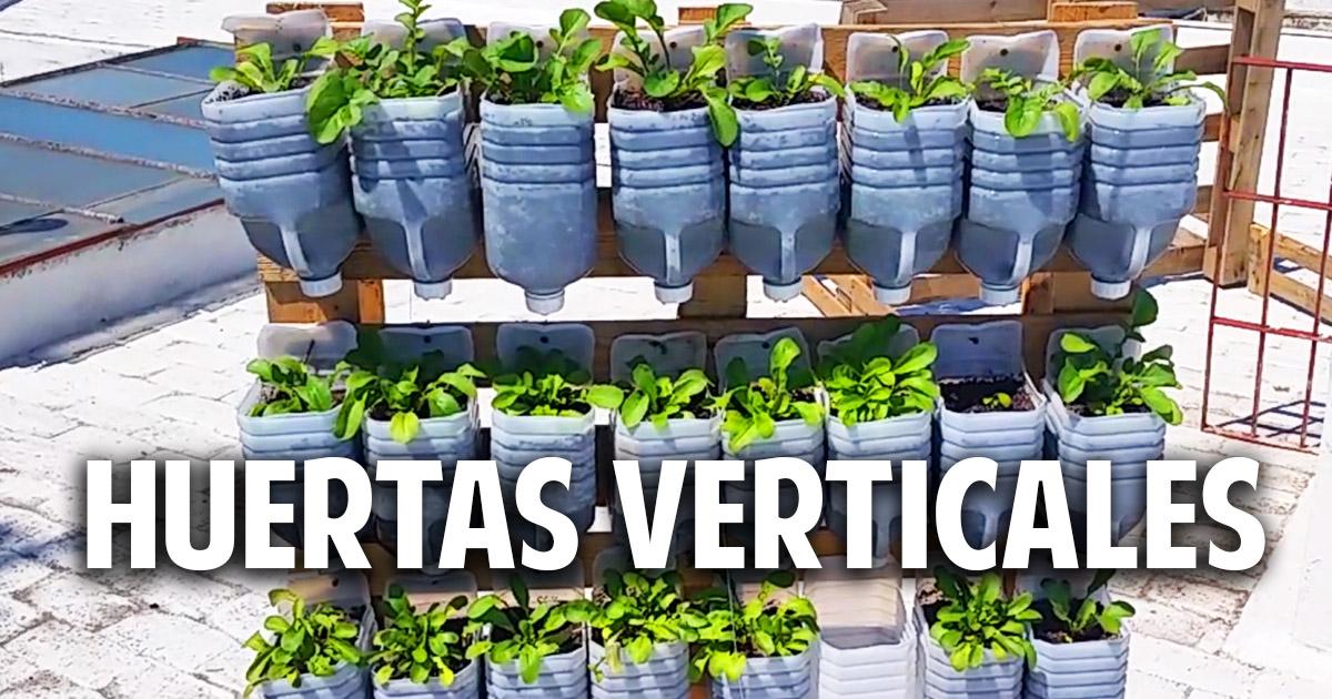 3 huertas verticales geniales con materiales reciclados for Huerto vertical casero